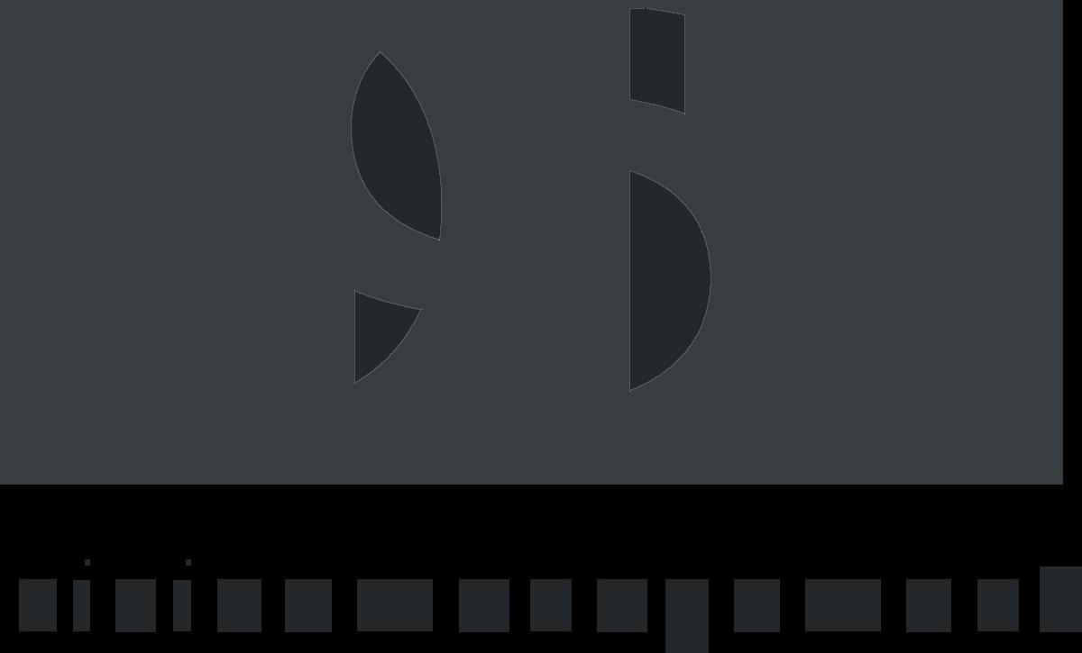 QSN logo
