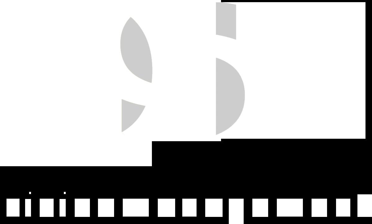QSN logo wit